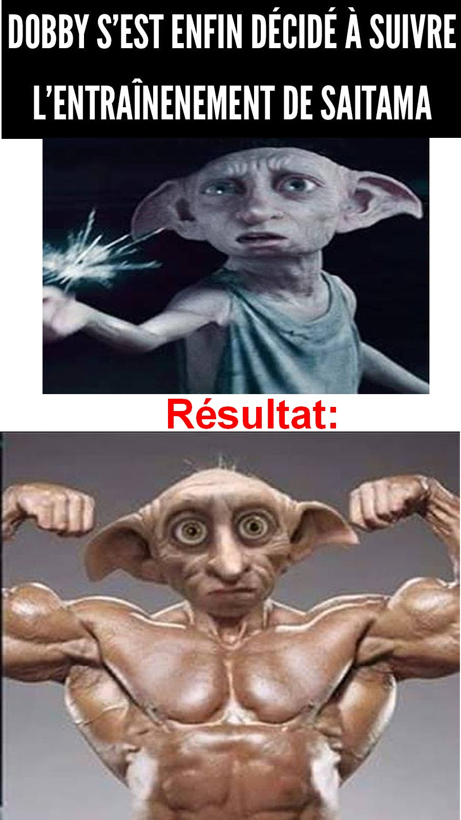 dobby musculation1